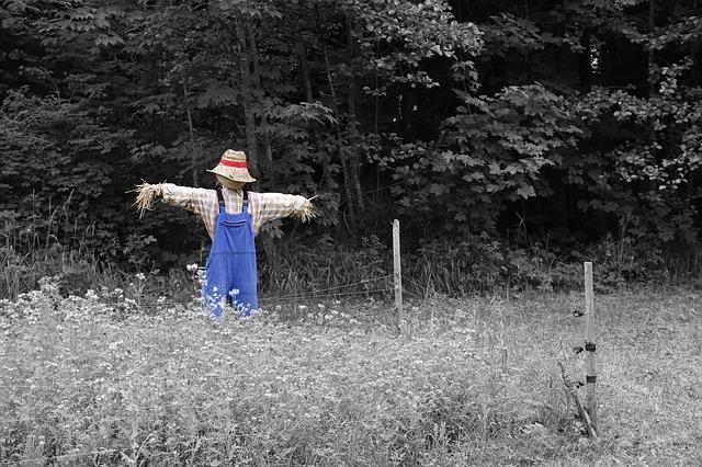 scarecrow-670720_640